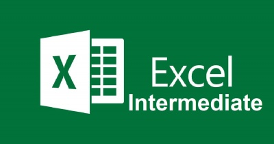 Online Microsoft Excel: Intermediate - LIVE Instruction