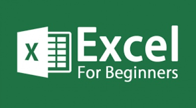 Online Microsoft Excel: Basics with Cheryl Welch, Ph.D